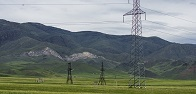 FGC UES to install 41 thousand devices for protection of birds against electric shock on the power lines of Siberia